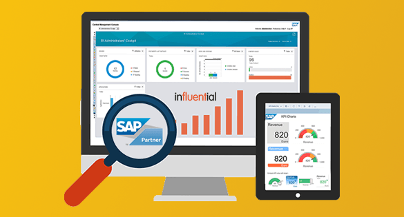 Your Options for SAP Business Objects End of Life   Blog