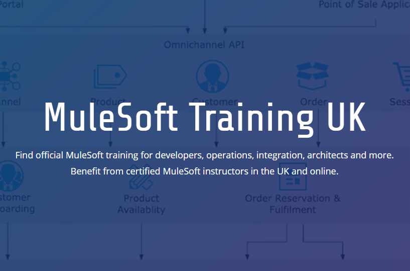MuleSoft Training website - title image